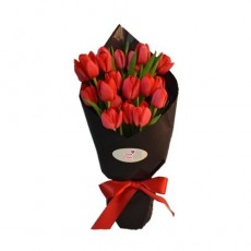 HB192 (20 Red Tulips)