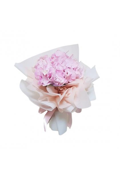 HB176 Pink Hydrangea