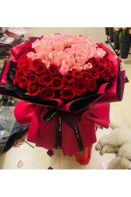 HB066 Red Pink Roses