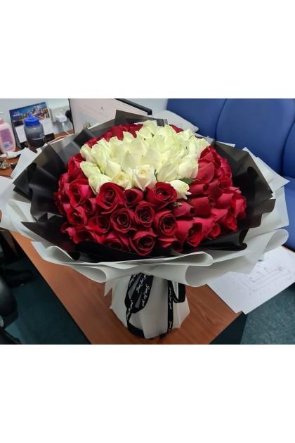 HB180 Red White Rose
