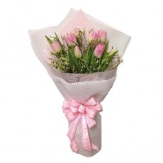 HB228 (10 Pink Tulips)