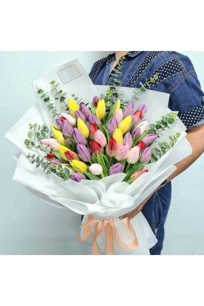 HB297 50 Mixed Colour Tulip