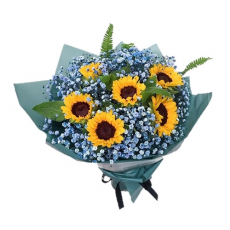 HB281 (Sunflower Color Baby Breath)