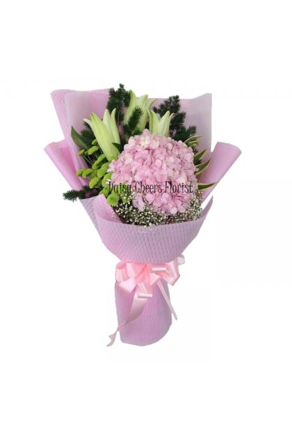 HB348 Lily Hydrangea