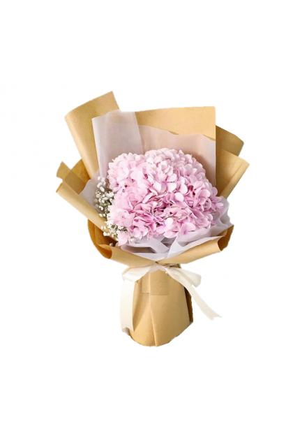 HB341 Pink Hydrangea