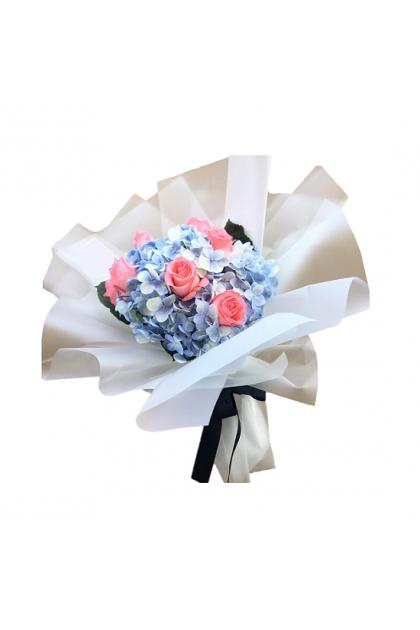 HB320 Hydrangea Rose