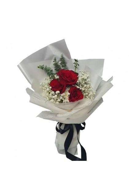 HB08832 Rose