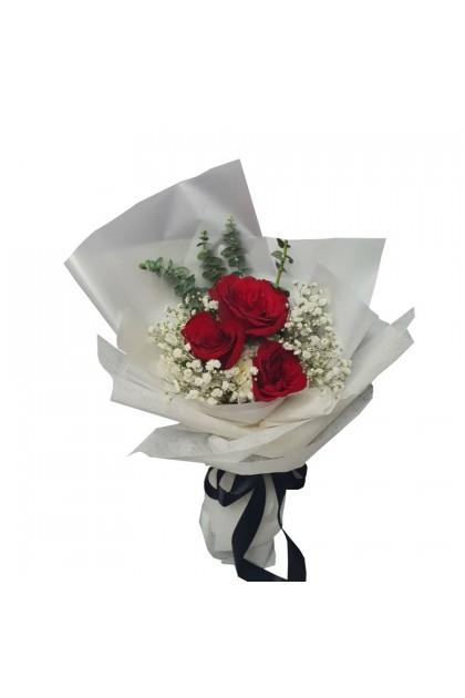 HB08879 Rose