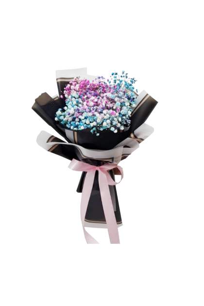 HB08949 Colorful Baby Breath