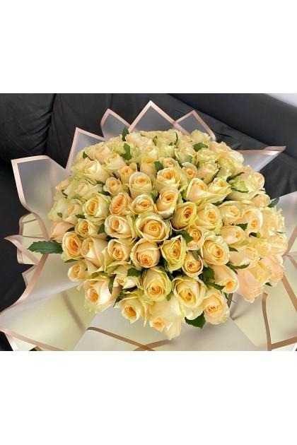 HB174 Champagne Rose