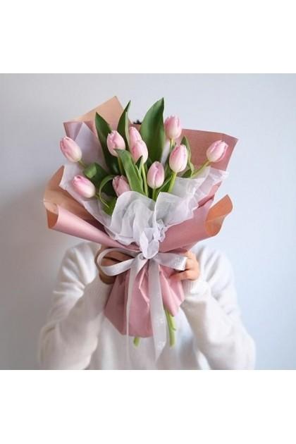HB182 Pink Tulip