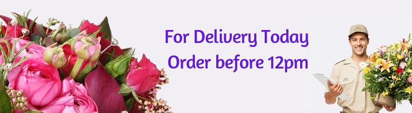 Bandar Sunway Petaling Jaya Puchong Shah Alam Subang Usj Selangor Fresh Flower Bouquet Free Delivery Daisy Cheers Florist Gift